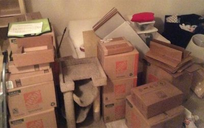 Tips For Getting Free Moving Boxes